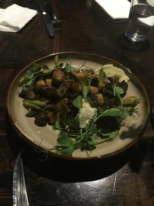 Bresolin mushrooms