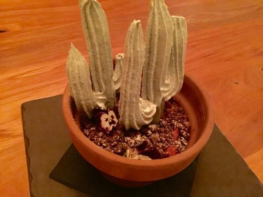 PdM cactus tiramisu