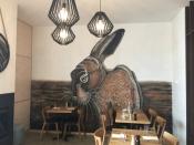 PK rabbit