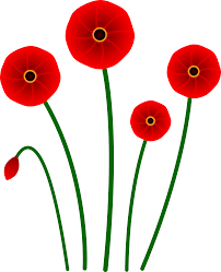 Poppy image.png